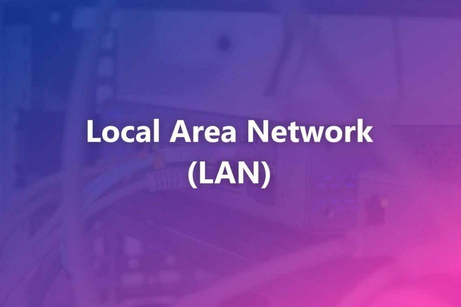 What is a LAN Network? Definition, Topology, Advantages, and Disadvantages