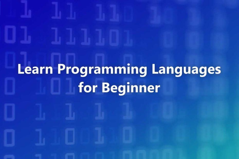 Learn Programming Languages For Beginners
