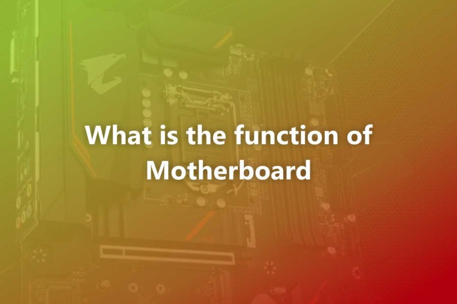 What is the function of the motherboard