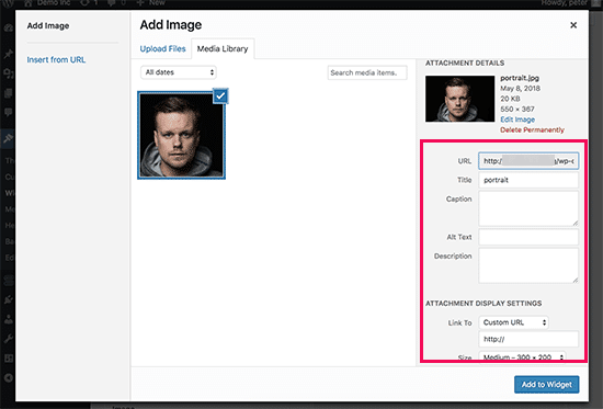 Add an Image in WordPress Widget - setting image