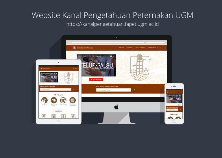 Jasa Desain Website di Jogja